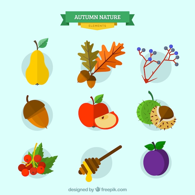 Collection of autumnal nature Free Vector