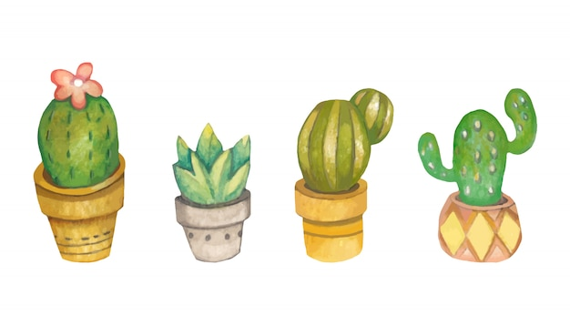 The collection of cactus in the plant pot on the white background. Premium Vector