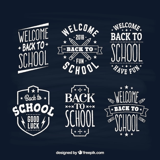 Collection of chalk back to school labels Free Vector