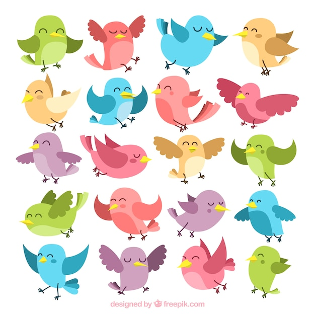 Collection of colorful birds Free Vector
