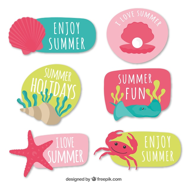Collection of colorful summer stickers with messages Free Vector