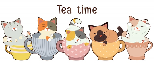 Collection of cute cats sitting in cups Premium Vector