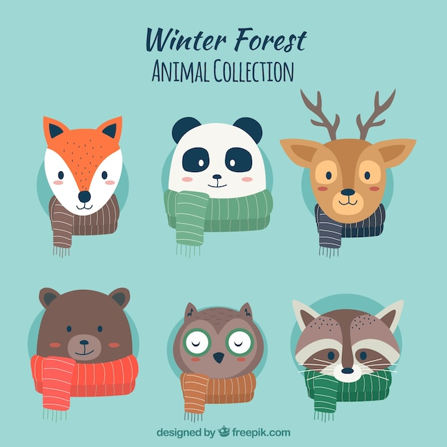 Collection cute of winter animals