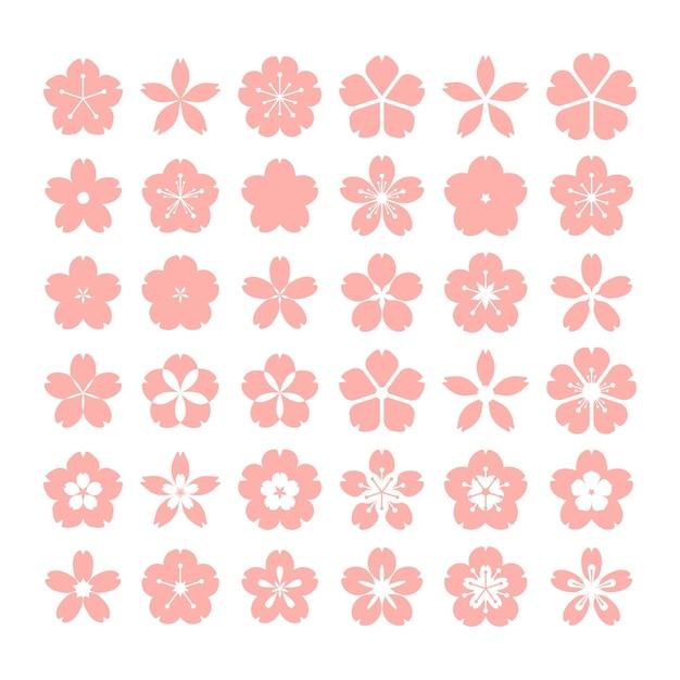 Collection of flat design sakura collection Premium Vector