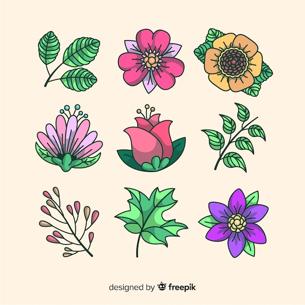 Collection of flowers and leaves background Free Vector