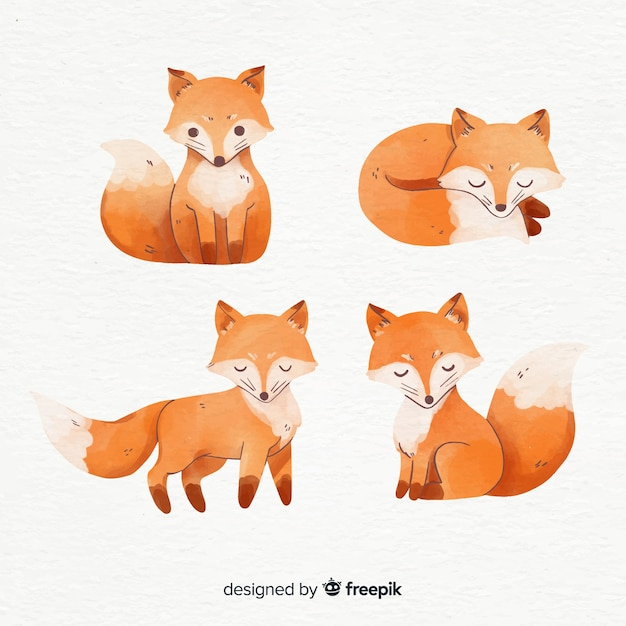Collection of foxes watercolor style Premium Vector