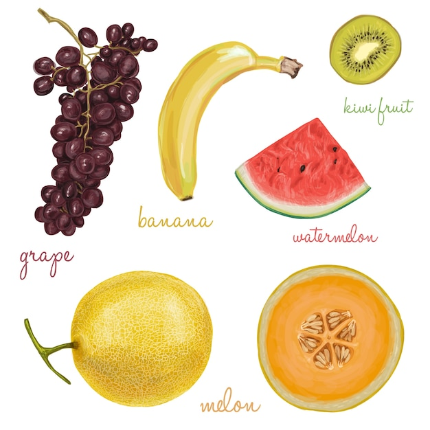 Collection of fruits painted with watercolors Free Vector