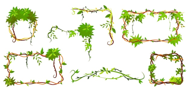 Collection of green tropical frame. cartoon frame shaped lianas, jungle plant branches with leaves Free Vector