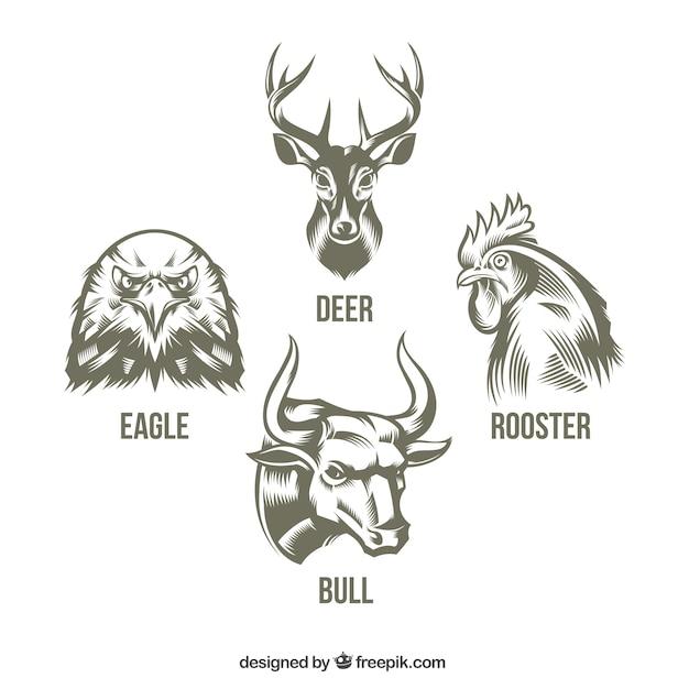 Collection of hand drawn animals Free Vector