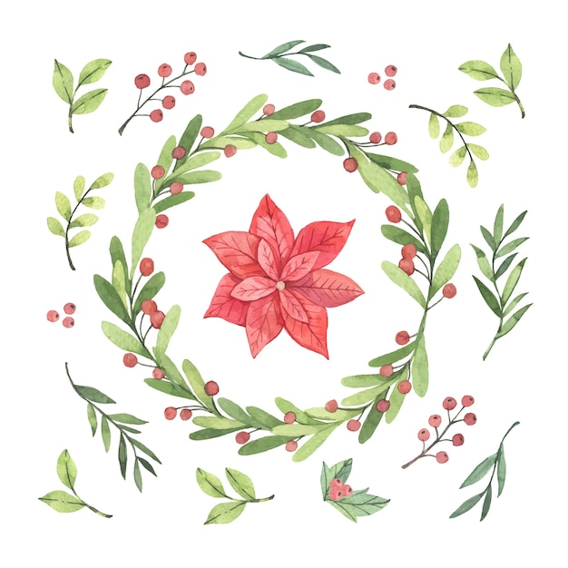 Collection of hand drawn christmas flower & wreath Free Vector