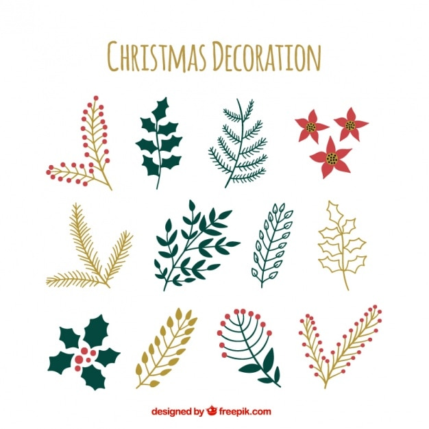 Collection of hand-drawn christmas plants Free Vector