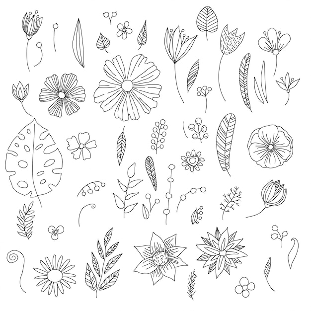 Collection of hand drawn flowers and plants, sketch, doodle style. Premium Vector
