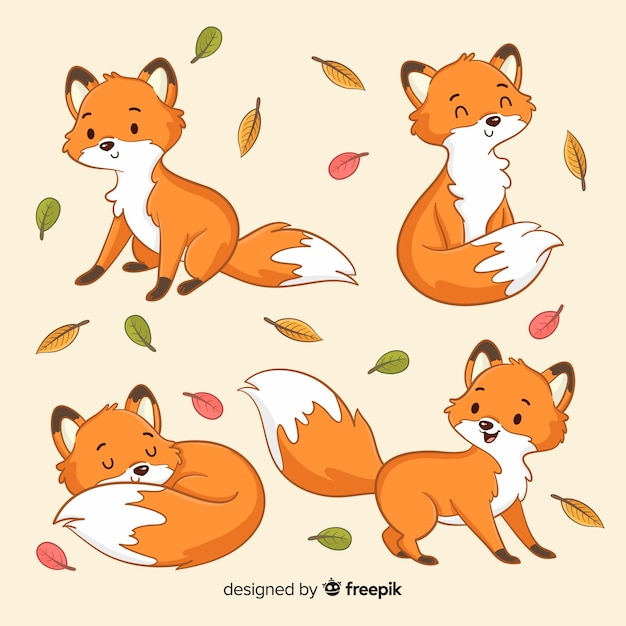Collection of hand drawn foxes Free Vector