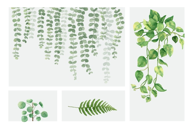 Collection of hand drawn plants isolated on white background Free Vector