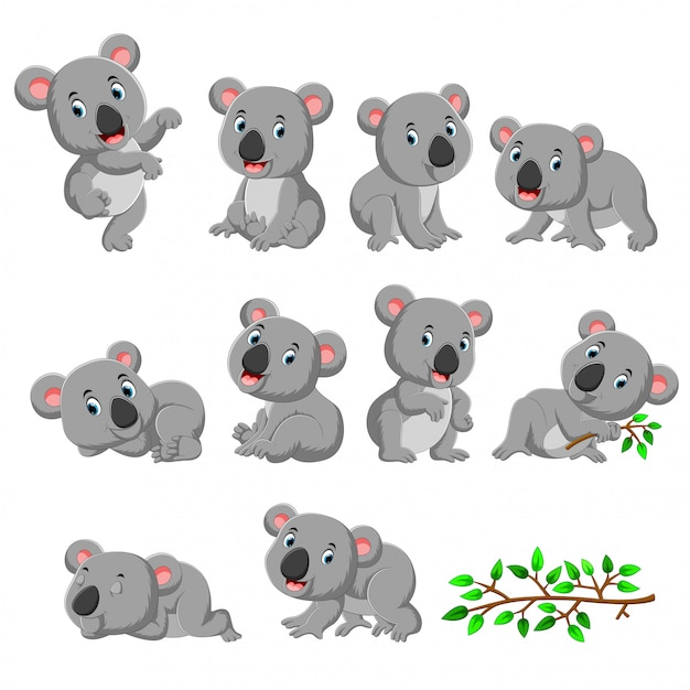 Collection of happy koala with various posing Premium Vector