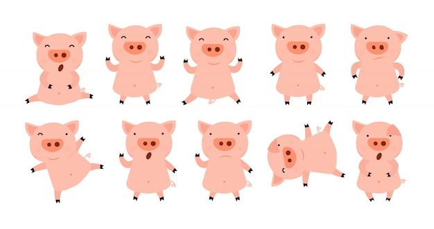 Collection of little piggy Premium Vector