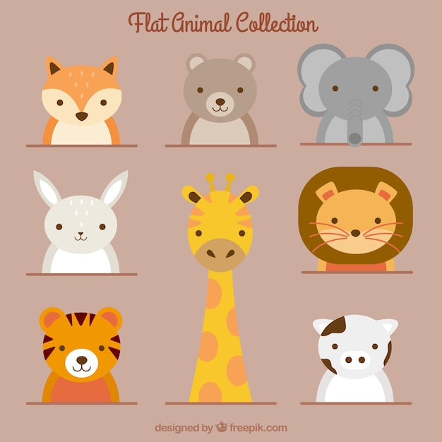 Collection of lovely animals in flat design Free Vector