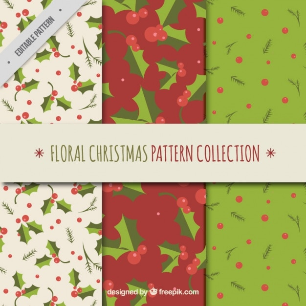 Collection Of Mistletoes Patterns Free Vector