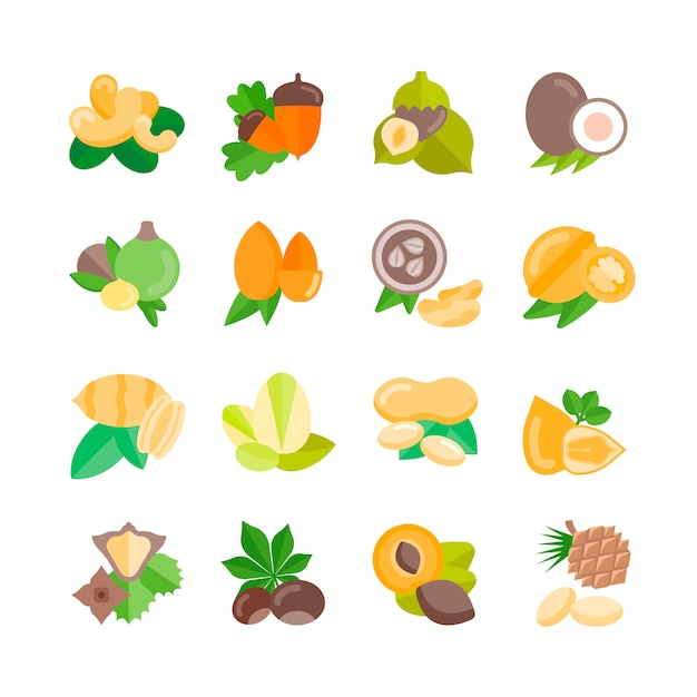 Collection of nuts Premium Vector