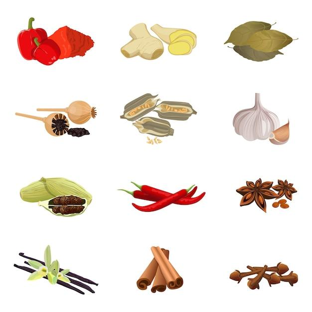 芳香性ハーブのコレクション赤パプリカ、生姜の根、月桂樹の葉、乾燥ポピー、ゴマの種、ニンニク、赤唐辛子、アニススター、蘭の花とバニラスティック、シナモンリアル Premiumベクター