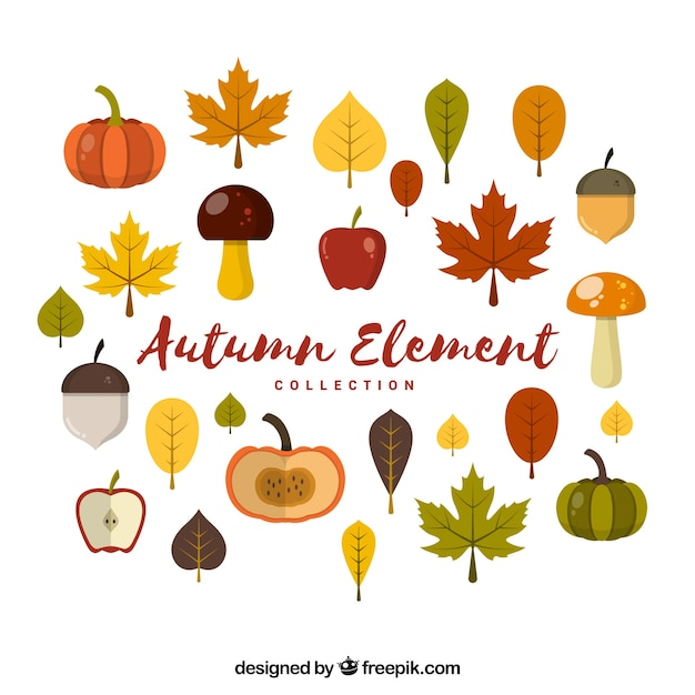 Collection of autumnal elements with vegetables and fruits