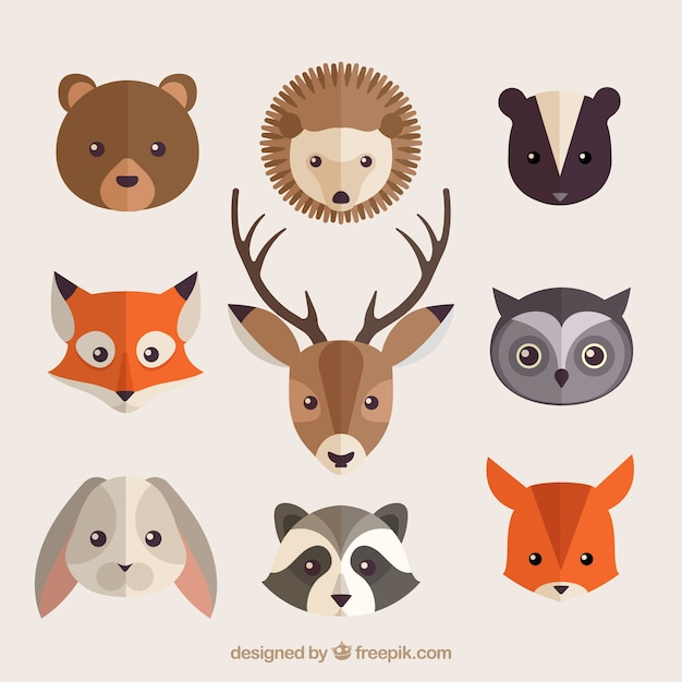collection of beautiful forest animals in flat design free vector