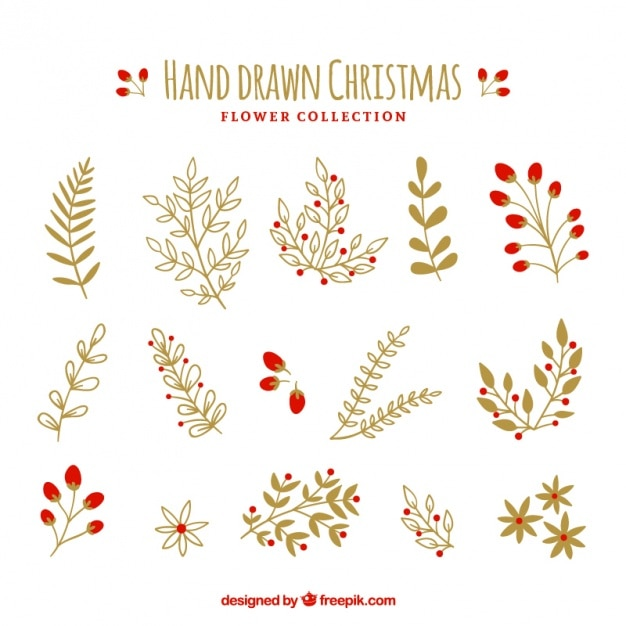 Collection of beautiful hand-drawn plants Free Vector