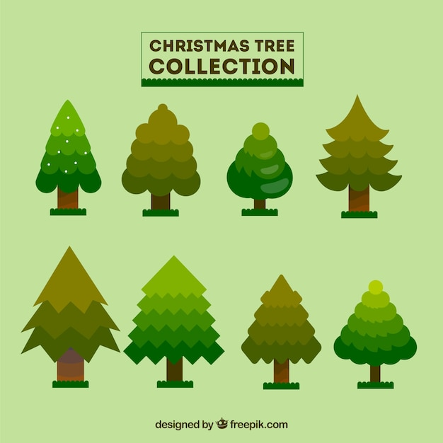 Christmas Tree Collection Portsmouth : Collection of christmas tree in flat design vector free