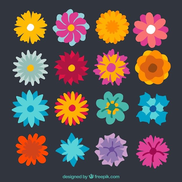 Collection of colorful spring flowers vector free download collection of colorful spring flowers free vector mightylinksfo