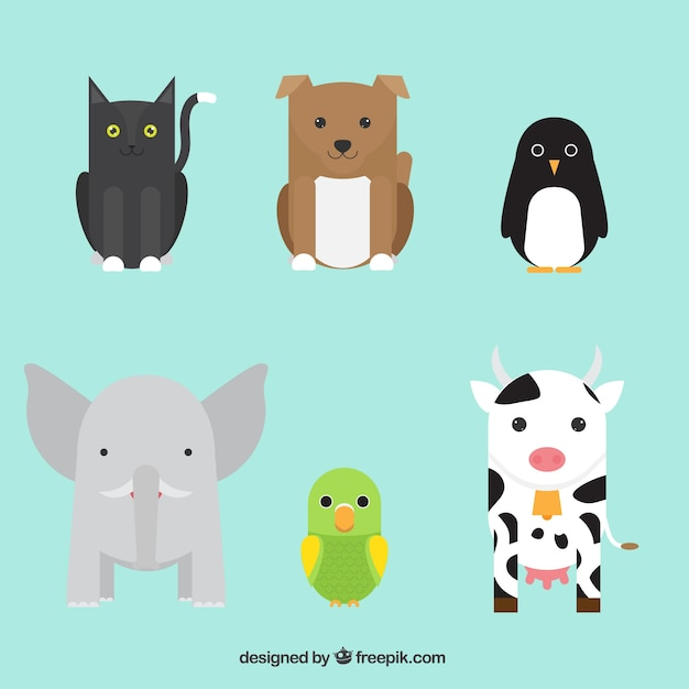 Collection of cute animals in flat\ design