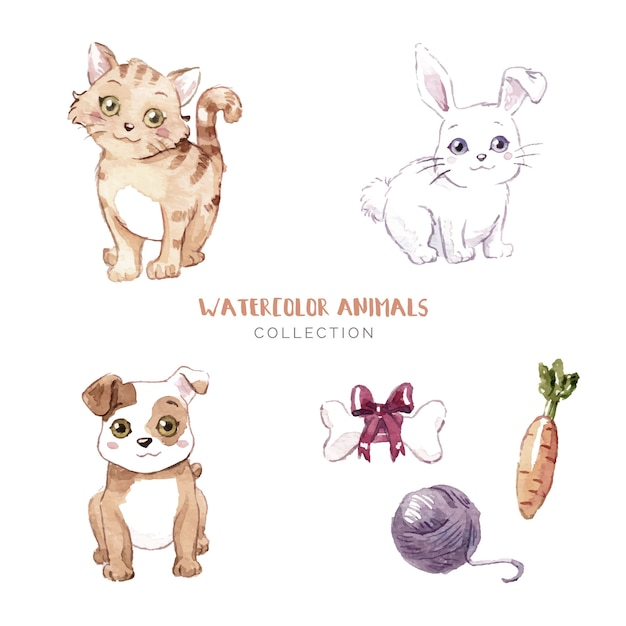 collection of cute animals Free Vector