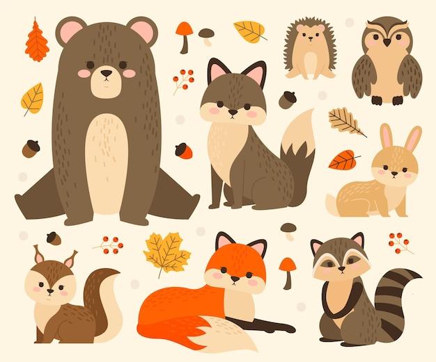 귀여운 숲 동물의 컬렉션 무료 벡터