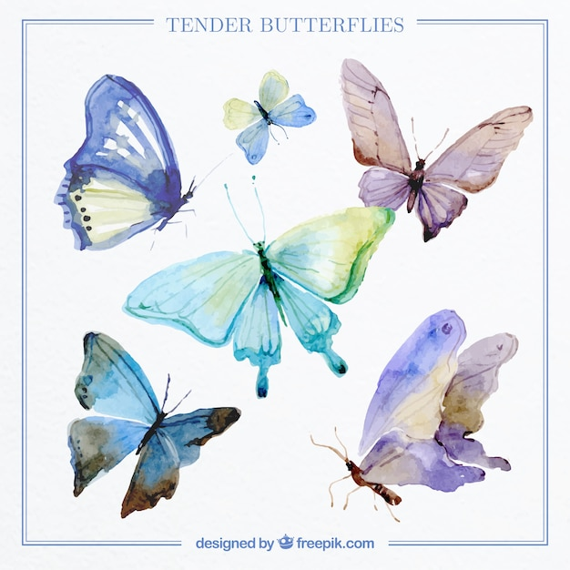 Collection of decorative butterflies watercolor Free Vector
