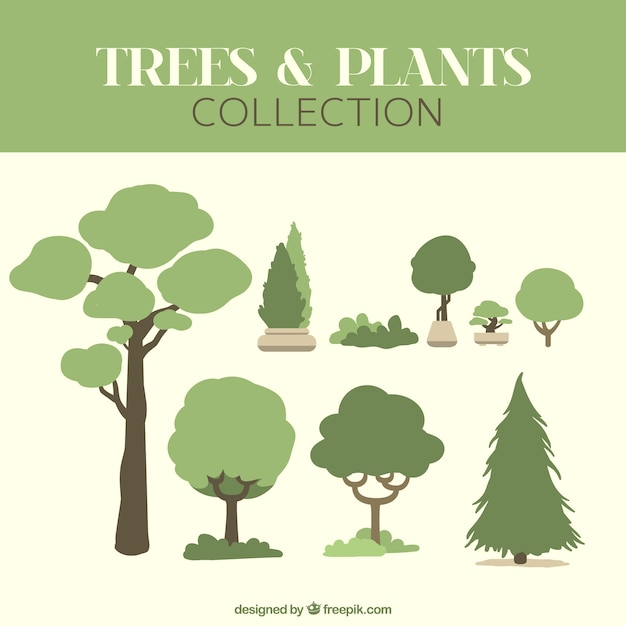 best turpin decorative ornamental southeastern ideas home trees outstanding gardens pa decor landscaping for