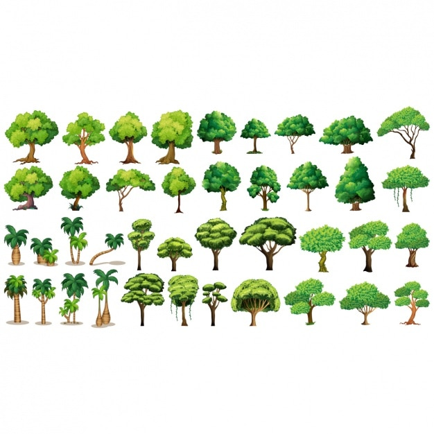 Collection of different trees Premium Vector