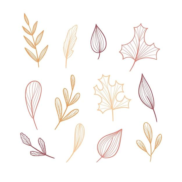 Коллекция нарисованных лесных листьев Бесплатные векторы