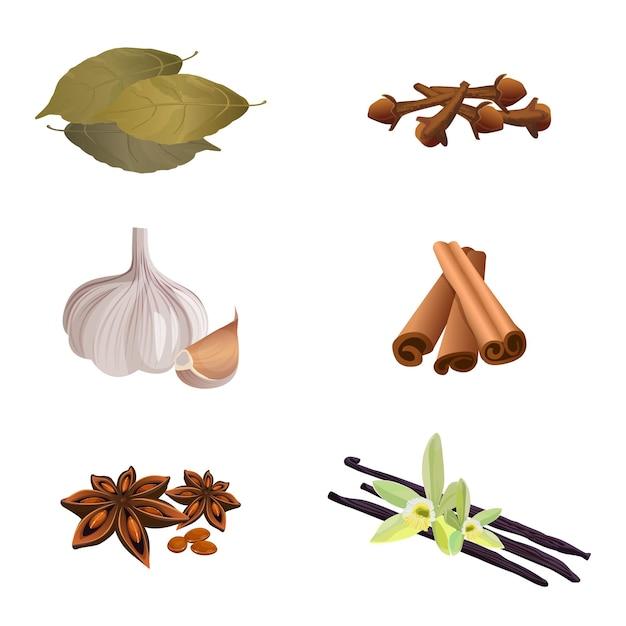 白で料理を準備するための乾燥芳香ハーブのコレクション。にんにく、シナモンスティック、乾燥クローブ、月桂樹の葉、アニススター、バニラのイラスト。料理と味覚を高めるためのスパイス Premiumベクター