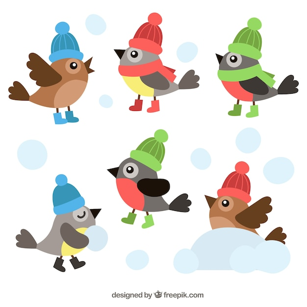 Collection of flat birds with colorful\ hats