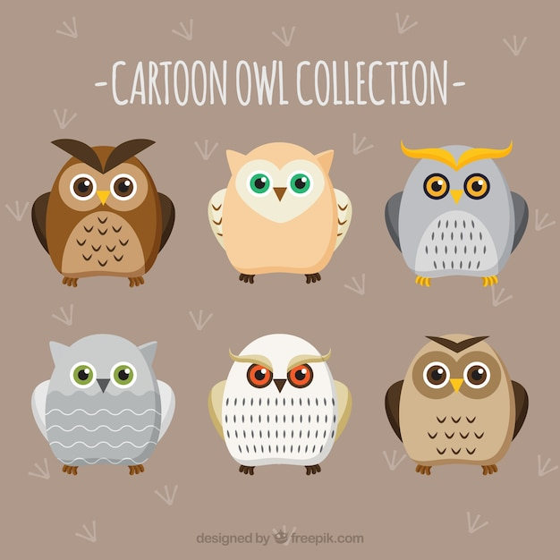 Collection of flat cartoon owls