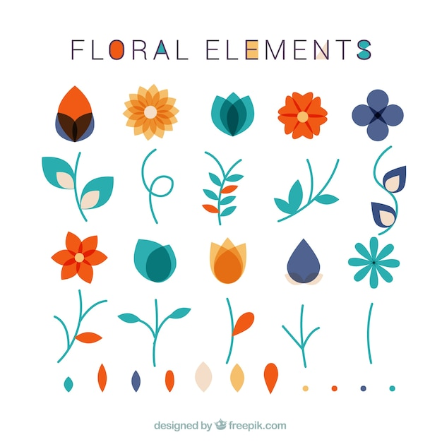 Collection of floral elements and leaves Free Vector