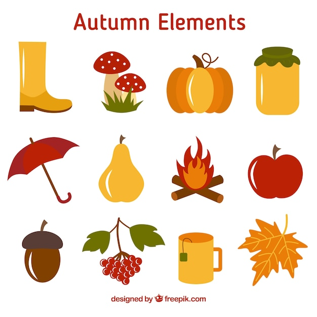 Collection of fruit and autumnal element