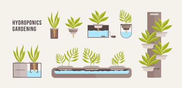 미네랄 영양 용액으로 냄비에서 자라는 녹색 식물의 컬렉션입니다. 프리미엄 벡터