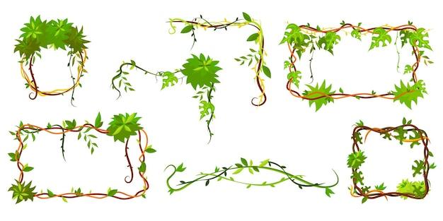 녹색 열 대 프레임의 컬렉션입니다. 만화 프레임 모양의 덩굴 식물, 잎이있는 정글 식물 가지 무료 벡터