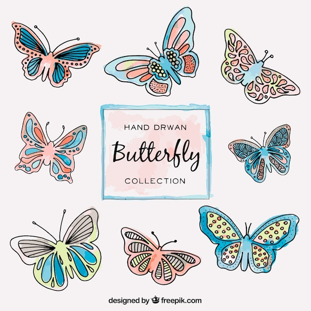 Collection of  hand drawn butterflies flying  Free Vector