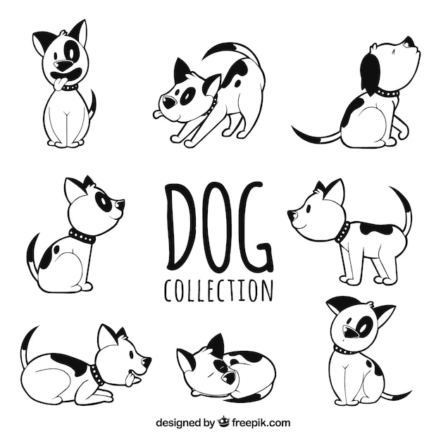Collection of hand-drawn dog in eight different postures Free Vector
