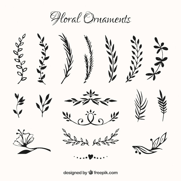 Collection of hand drawn flowers ornament Free Vector