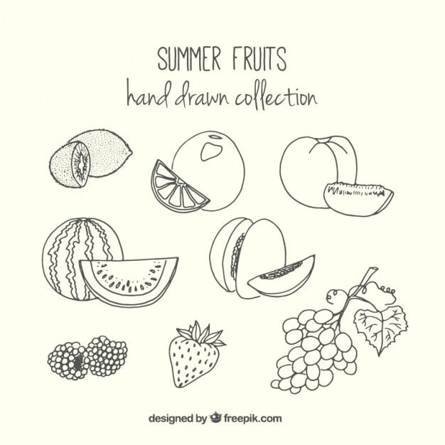 collection of hand drawn summer fruit premium vector