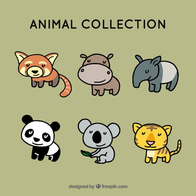 Collection of happy animals