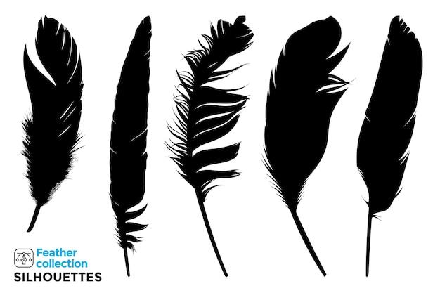 鳥の羽の孤立したシルエットのコレクション。 Premiumベクター