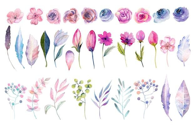 Коллекция изолированных акварель розовых роз, весенних цветов, листьев и ветвей Premium векторы